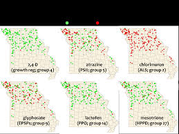 Herbicide Groups Chart Think Burrus Blog Herbicide Resistant Waterhemp What Can