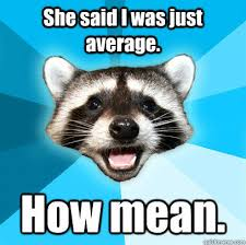 She said I was just average. How mean. - Lame Pun Coon - quickmeme via Relatably.com