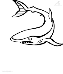 Shark Coloring Page Clipart Panda Free Clipart Images