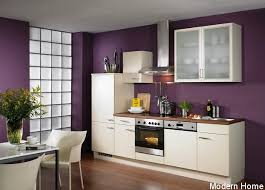 kitchen paintingPurple Kitchen Paint  thesouvlakihousecom