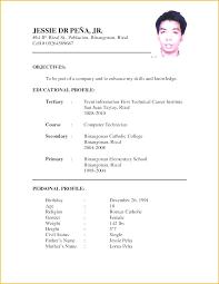 curriculum vitae free template curriculum vitae format free template curriculum vitae template and