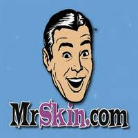Image result for mr .skin