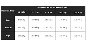 Beagle Puppy Feeding Chart How Much Food Does A Beagle Need
