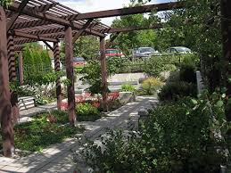 garden shade. Shade Garden With A Pergola E