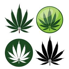 Dispensary Logo Design How The Marijuana Logo Is Changing In The Dispensary