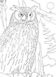 119 Dessins De Coloriage Oiseau Imprimer Sur Laguerche Com Page 5