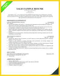 Apartment Rental Agent Sample Resume Magnificent Leasing Consultant Resumes Leasing Agent Resume Leasing Consultant