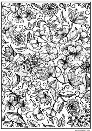 Small Picture FLORAL OR PAISLEY PATTERNS Free Printable Adult Coloring Pages