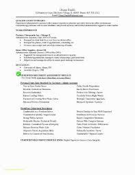 Modern Resume Template Word Professional Modern Resume Template