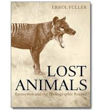 best extinct creatures images extinct animals 10 extinct animals lost to planet earth but preserved in photographs excerpt photo essay