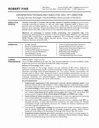 35 Fresh Cio Resume Sample Resume Templates Resume Templates