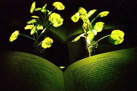 unique of artificial sunlight lamp for plants