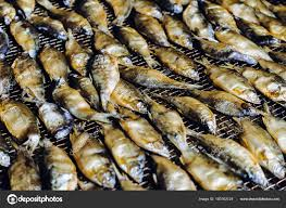 Fish seafood factory — Stock Photo ...