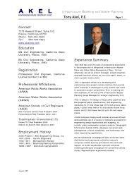 Software Developer CV Sample