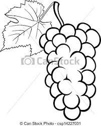 grapes clipart black and white. vector - grapes illustration for coloring book clipart black and white