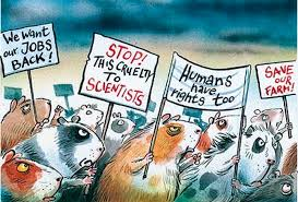 animals have rights essay do animals have rights essay