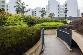 hdb rooftop gardens in singapore