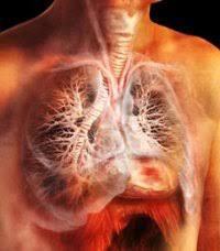 Туберкулёз лёгких в сочетании с другими заболеваниями Симптомы и  Туберкулёз лёгких в сочетании с другими заболеваниями