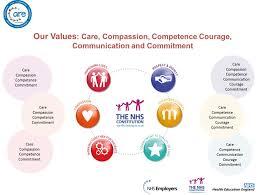 c s nursing values essay c s nursing values essay edu essay