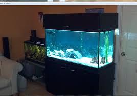 fish tank stand design ideas office aquarium. Baby Nursery: Licious Fish Tank Stand Design Ideas Office Aquarium Improve Can Ideas: Full A