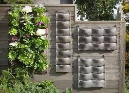 Small Picture Living Wall Planter Living Walls Grovert Living Wall Planter
