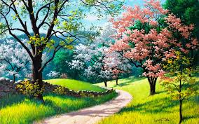 Image result for nature pictures