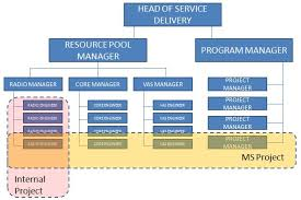 Managed Service Managed Service Organizational Structure