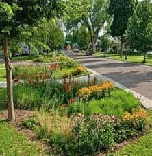 Small Picture 87 best Rain Gardens images on Pinterest Rain garden Garden