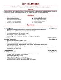 impactful professional media  amp  entertainment resume examples    lane server