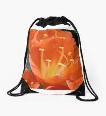 bright orange clivia blooms drawstring bag