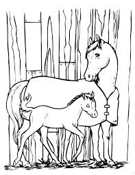 Small Picture Horse And Pony Coloring Page H M Coloring Pages
