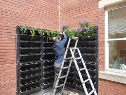 turn a vertical space into an edible living wall  urban planters