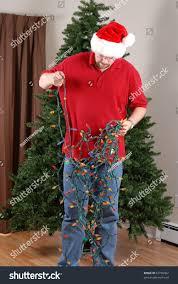 Untangle Christmas Tree Lights Man Attempts Untangle String Christmas Lights Royalty Free