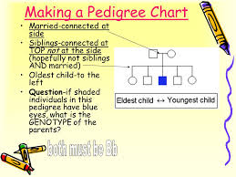 Understanding A Pedigree Chart A Family History Of A Genetic