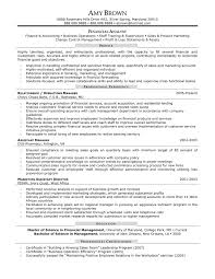 financial analyst cv