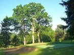 Venues - Ottawa Jermain Park