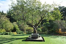 Garden Design Norfolk Custom Design Inspiration