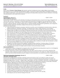 Director Of Information Technology Resume Sample Director Of Information Technology Resume Free Downloads Resume It 7