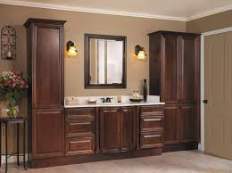 Bathroom Cabinet Ideas RacetotopCom - Bathroom cabinet remodel