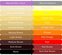 Red Orange Colour Chart What Causes Blonde Hair To Turn Pink Orange Blog Simplyhair