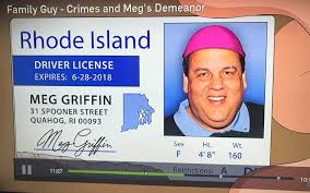 Meg A Fake Gets Newjersey Id