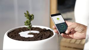 ipot modular planting system supercake. Ipot Modular Planting System Supercake. Beautiful Bios Incube Turns Your Body Into A Tree Supercake P