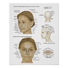 Facial Rejuvenation Cosmetic Acupuncture Points Chart Acupressure Facial Rejuvenation Points Chart Free Download