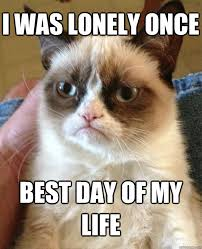 I was lonely once best day of my life - Grumpy Cat - quickmeme via Relatably.com