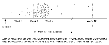 What Is The Window Period For An Hiv Test Guides Hiv I Base