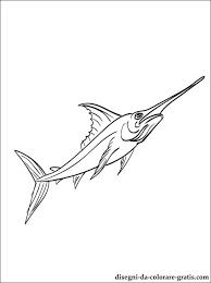 Disegni Da Colorare Pesce Spada Disegni Da Colorare Gratis