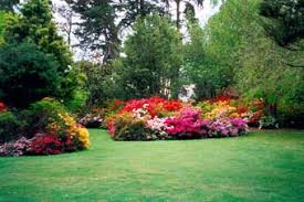 flower gardens pictures. Beautiful Flower Garden Photography Vuwhlli Gardens Pictures