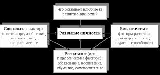 Образование как фактор развития личности Реферат страница  Развитие детерминировано внутренними и внешними условиями Средовые влияния и воспитание относятся к внешним факторам развития природные же склонности и