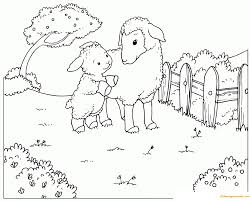 Sheep And Lamb In The Spring