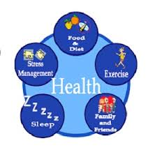 health is wealth short essay english essay on importance of health